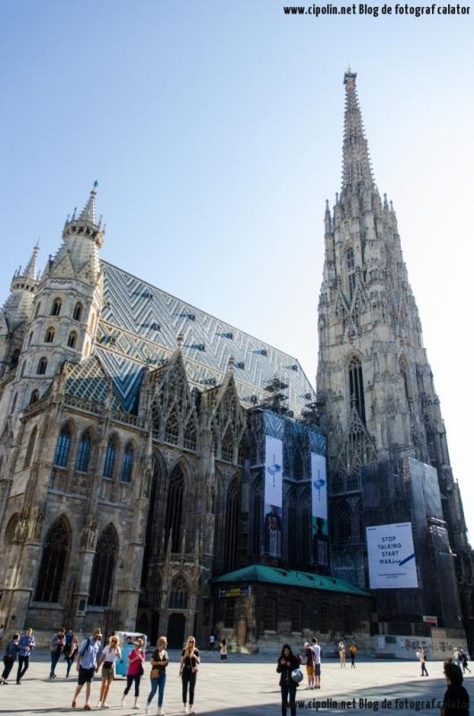 catedrala sft stefan din Viena