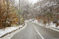 drumul ce duce catre partia de ski din Bahnari Vaslui
