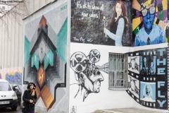 Arta stradala pe peretii blocurilor din Botosani