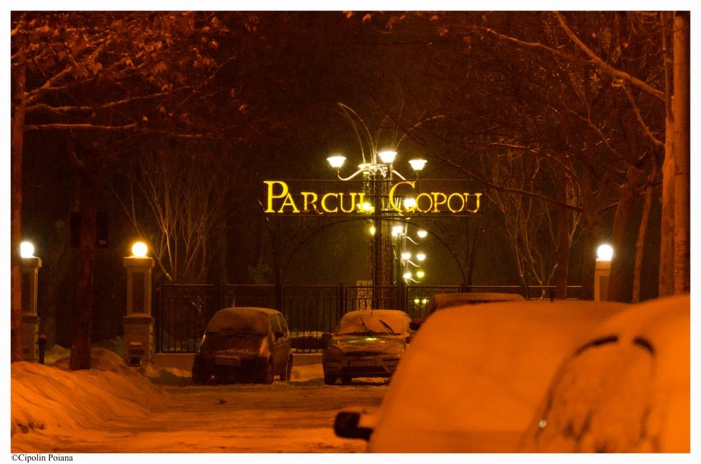 Intrare in Parcul Copou