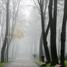 Parcul Copou intr-o dimineață de toamna