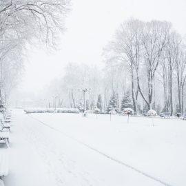 Parcul Copou Vaslui la prima ninsoare din iarna asta