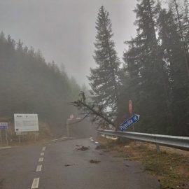 A fost furtuna noaptea trecută in Vaslui!