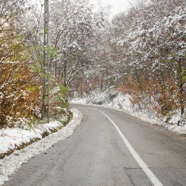 Albul iernii de pe dealurile din Viisoara!